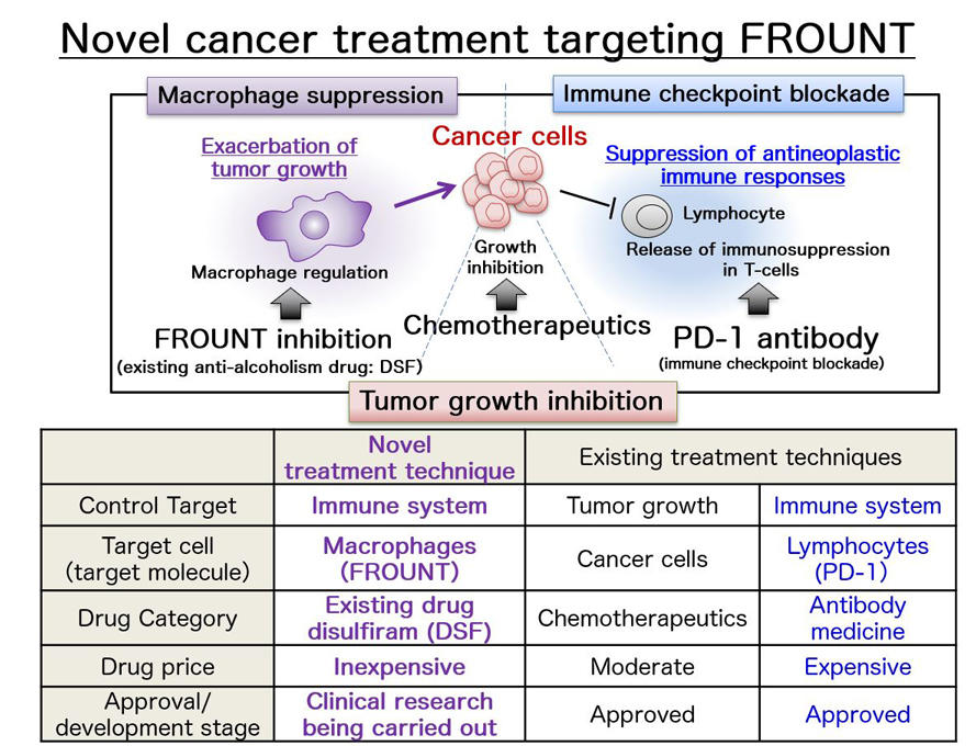 Double trouble: A drug for alcoholism can also treat cancer by targeting macrophages