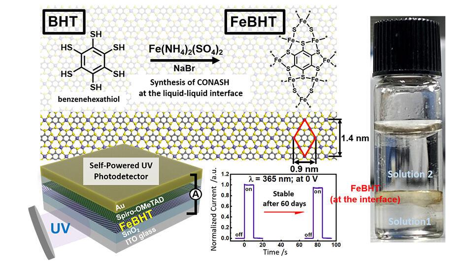 Unlocking Efficient Light-Energy Conversion with Stable Coordination Nanosheets