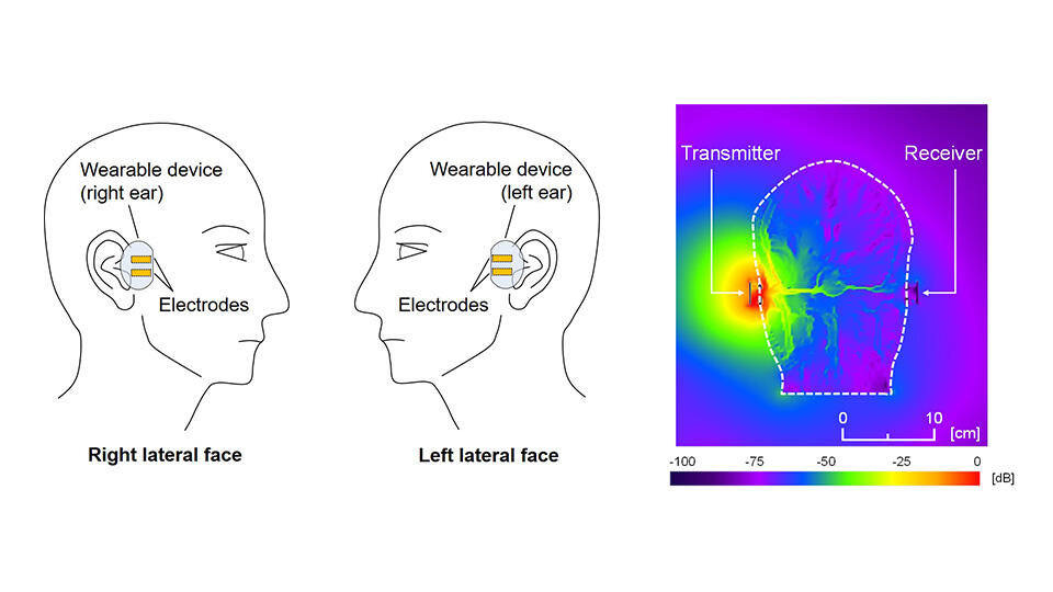 All in Your Head: Exploring Human-Body Communications with Binaural Hearing Aids