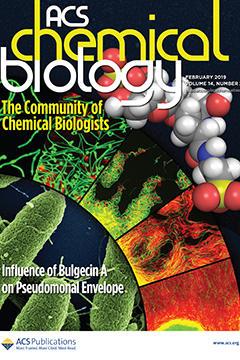 本学教員の論文が『ACS Chemical Biology』誌の表紙として選出