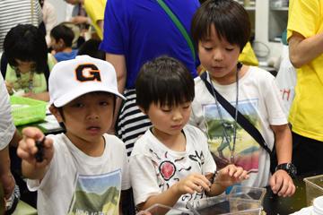 サイエンスフェア「みらい研究室~科学へのトビラ~」を開催(6/22-23・開催報告)_04
