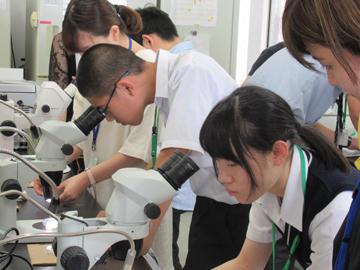 「高校生のためのサイエンスプログラム-あなたも1日大学生-」を開催(8/31・開催報告)_宮川研究室②