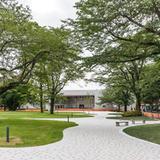 野田キャンパス中庭がリニューアル
